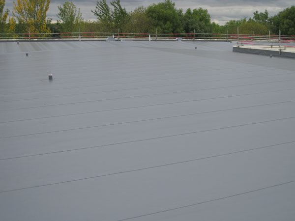 Single Ply Membrane : Flat roof repair construction roofing contractors in